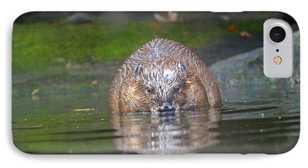 Wet Beaver IPhone Case