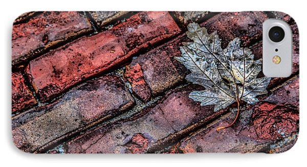 Wet Leaf Road IPhone Case by Ray Congrove