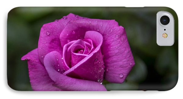 Wet Rose IPhone Case by Michael Waters