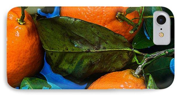 Wet Tangerines Phone Case by Alexander Senin