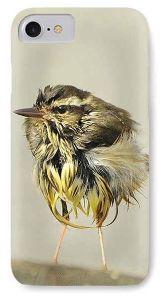 Wet Warbler IPhone Case
