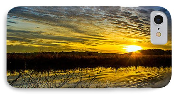 Wetlands Sunset IPhone Case