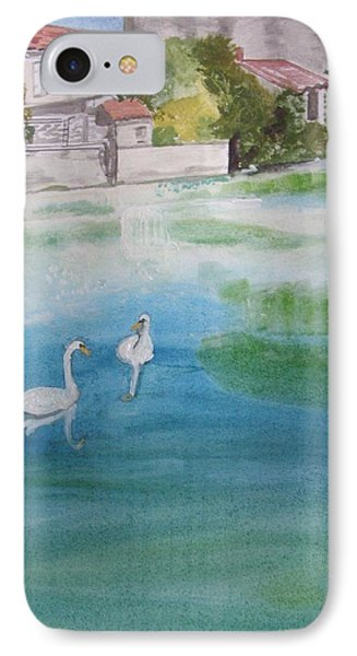 We've Lost The Baby......again IPhone Case by Carole Robins