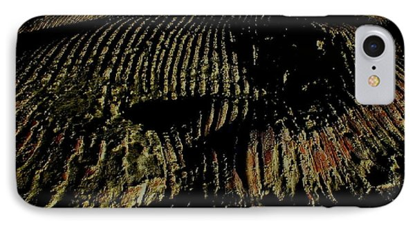 Whale On Stinson Beach 2 IPhone Case by Rachel Lowry