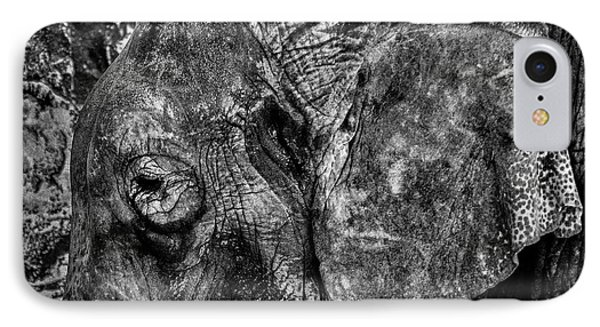 What Elephant? IPhone Case by Richard Mason