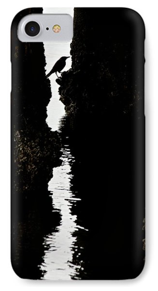 What Lies Beneath IPhone Case by Penny Meyers