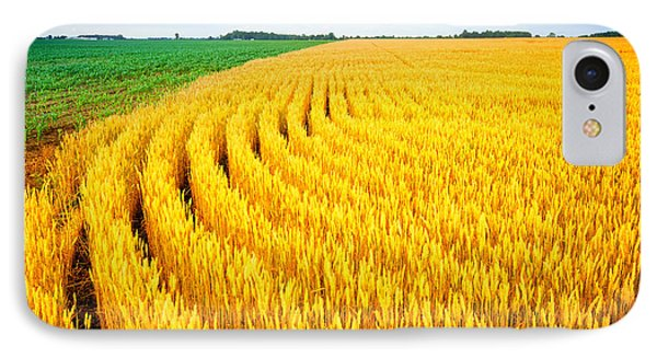 Wheat And Corn IPhone Case by Alexey Stiop