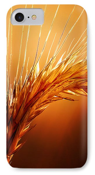 Wheat Close-up Phone Case by Johan Swanepoel