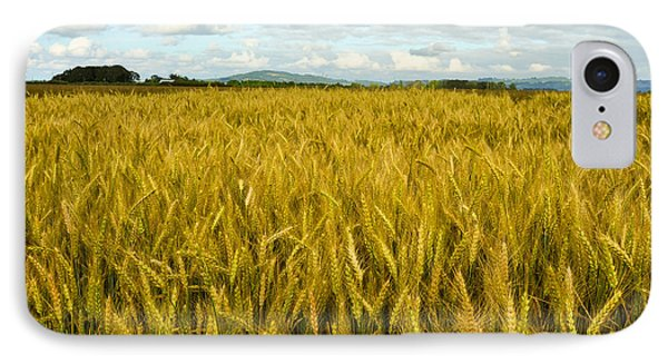 IPhone Case featuring the photograph Wheat Field by Crystal Hoeveler