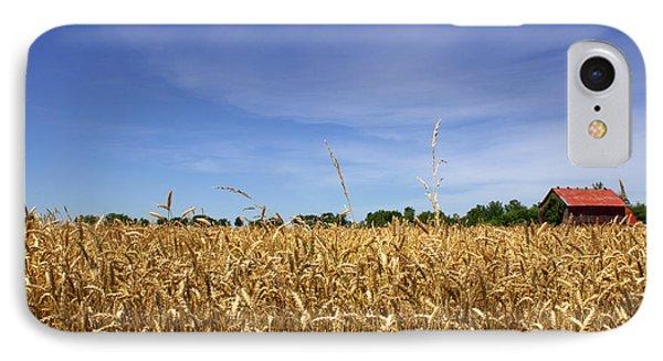 Wheat Field II IPhone Case