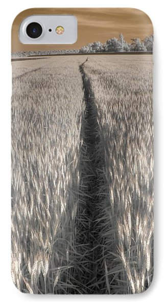 Wheat Field IPhone Case by Jane Linders