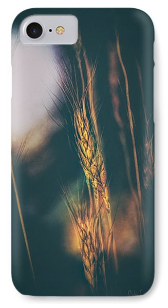 Wheat Of The Evening IPhone Case by Bob Orsillo
