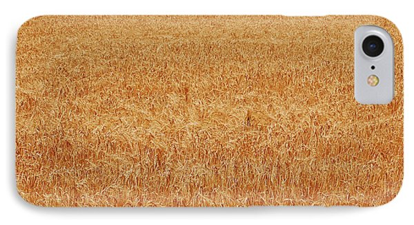Wheat Texture IPhone Case