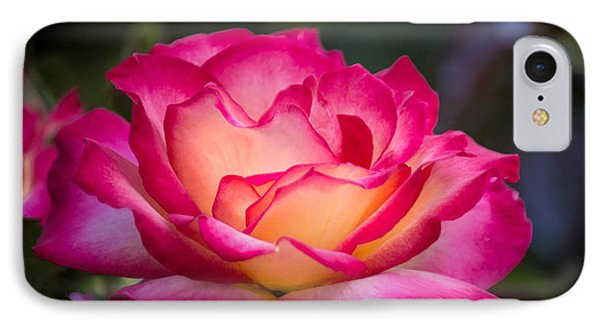 IPhone Case featuring the photograph When It's Love by Patricia Babbitt