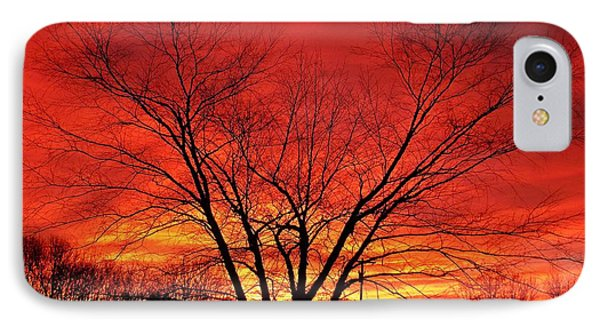 When Morning Guilds The Skies IPhone Case by Christian Mattison