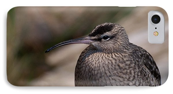 IPhone Case featuring the photograph Whimbrel by Bianca Nadeau