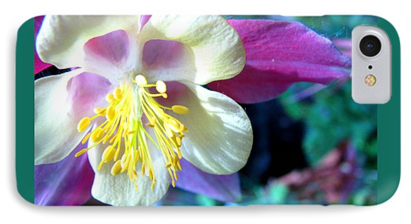IPhone Case featuring the photograph Whimsical Columbine by Brooks Garten Hauschild