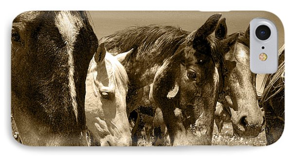 Whimsical Stallions IPhone Case