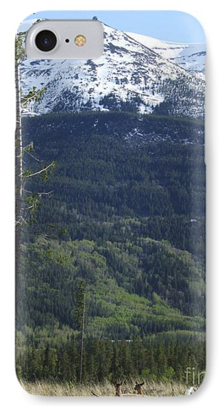 Whistler - Jasper - Canada IPhone Case by Phil Banks