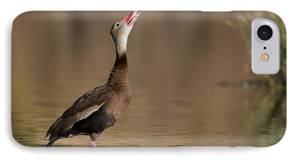 Whistling Duck Whistling IPhone Case