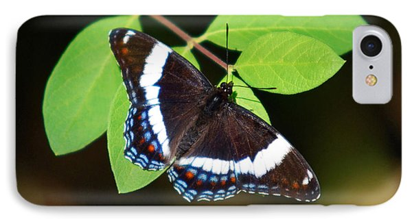 White Admiral Butterfly Phone Case by Christina Rollo