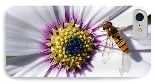 IPhone Case featuring the photograph White African Daisy Marmalade Fly by Scott Lyons