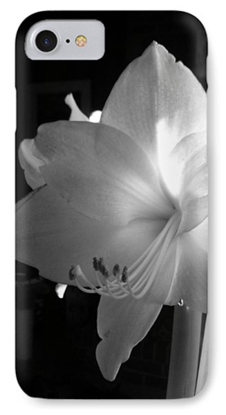 White Amaryllis  IPhone Case by Patricia Greer