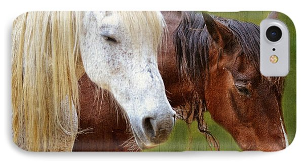 White And Brown Horse IPhone Case
