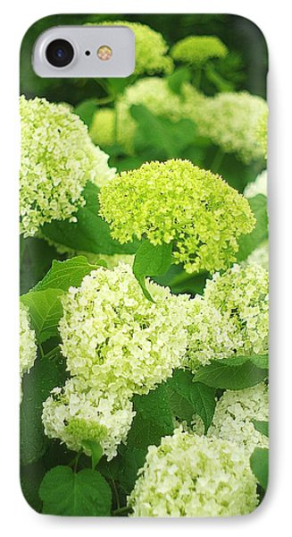 IPhone Case featuring the photograph White And Green Hydrangea Flowers by Suzanne Powers
