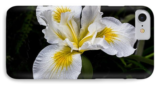 White And Yellow Bearded Iris IPhone Case by Photographic Art by Russel Ray Photos