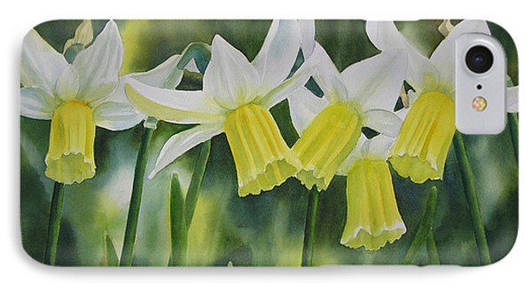 White And Yellow Daffodils IPhone Case by Sharon Freeman