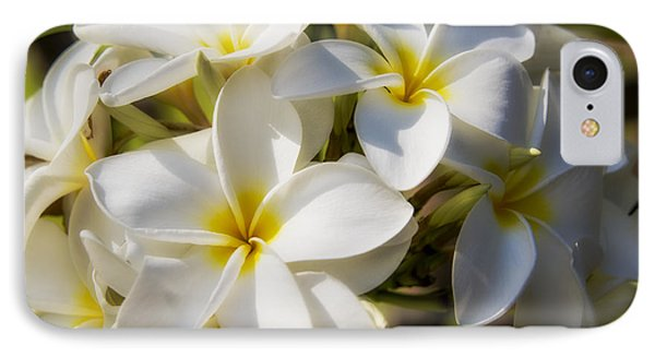 White And Yellow Plumeria 2 IPhone Case