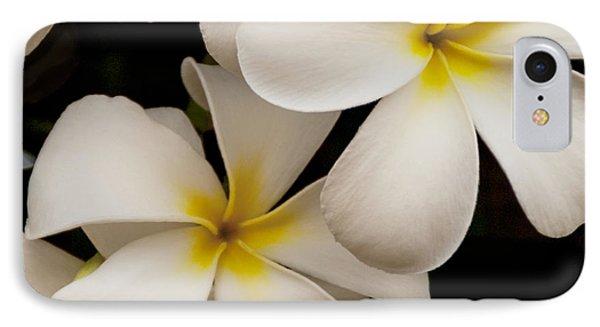 White And Yellow Plumeria - Kauai Hawaii IPhone Case