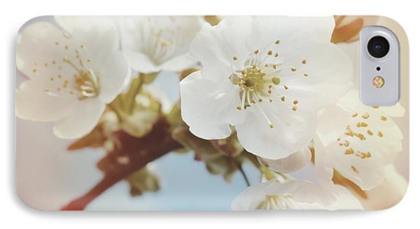 White Apple Blossom In Spring IPhone Case by Matthias Hauser