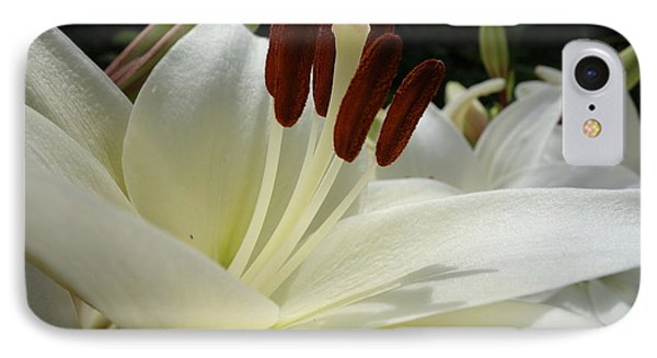 White Asiatic Lily IPhone 7 Case by Jacqueline Athmann