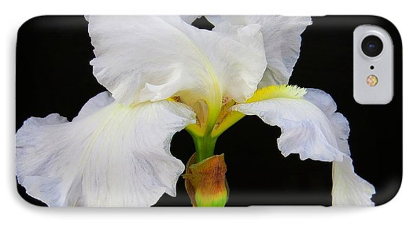 White Bearded Iris IPhone Case