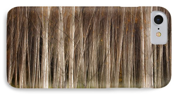 White Birch Abstract IPhone Case by John Vose