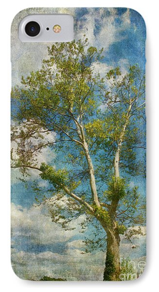 White Birch In May Phone Case by Lois Bryan