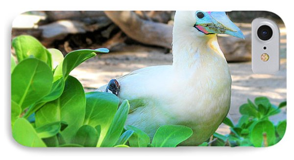 IPhone Case featuring the photograph White Bird by Kristine Merc