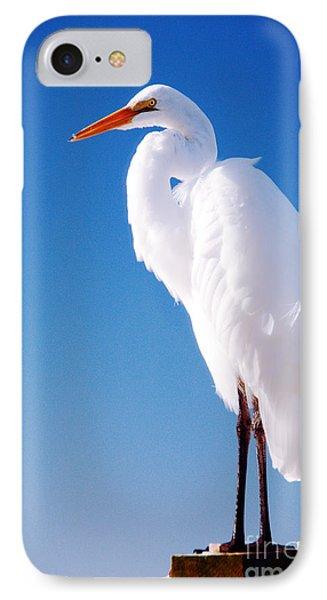 Great White Heron IPhone Case by Vizual Studio