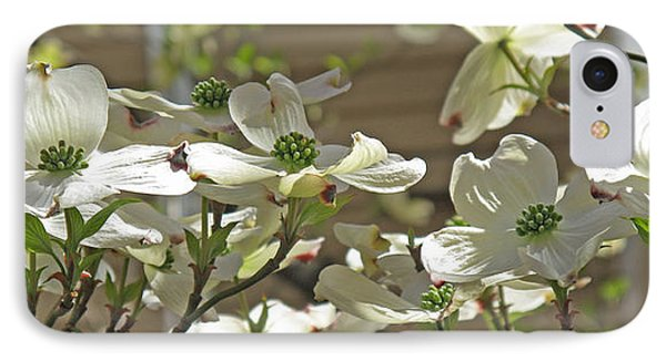 White Blossoms Phone Case by Barbara McDevitt