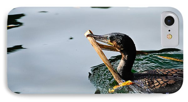 White Breasted Cormorant IPhone Case by Bonnie Fink