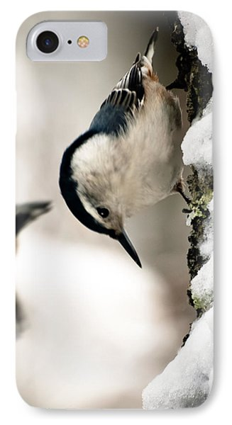 White Breasted Nuthatch In The Snow Phone Case by Bob Orsillo