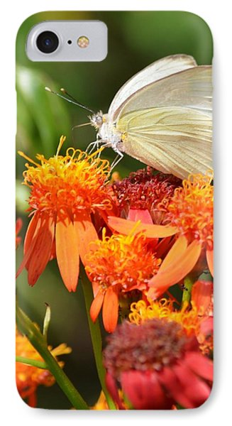 White Butterfly On Mexican Flame IPhone Case