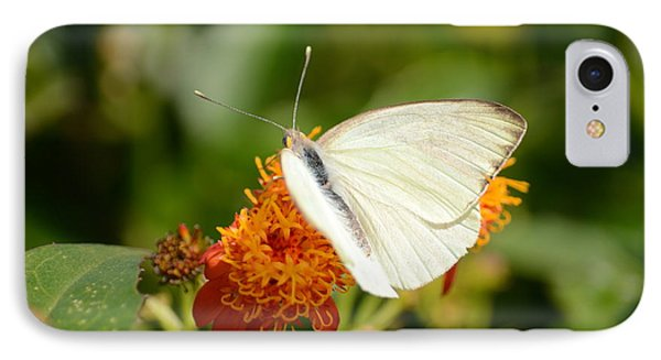 White Butterfly On Mexican Flame IPhone Case by Debra Martz