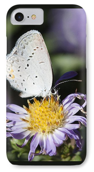IPhone Case featuring the photograph White Butterfly by Chris Scroggins