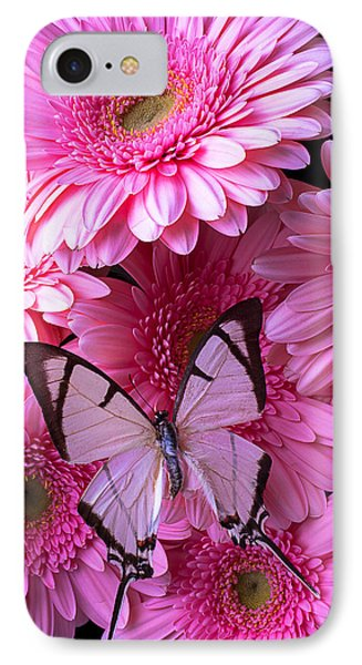 White Butterfly On Pink Gerbera Daisies IPhone Case by Garry Gay