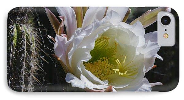 White Cactus Bloom IPhone Case