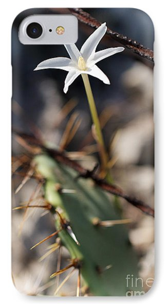 IPhone Case featuring the photograph White Cactus Flower by Erika Weber