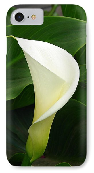 IPhone Case featuring the photograph White Calla by Lew Davis